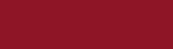 Fondazione Alario per Elea - Velia